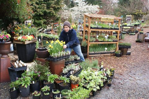 Foreclosure Fight Sprouts At Village Green Perennial Nursery